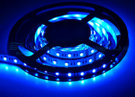 Cina 24V DC 5050 RGB LED Strip, Lampu Strip Warna Led Dengan Sertifikat CE RoHS UL Distributor